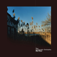 THE CINEMATIC ORCHESTRA Ma Fleur