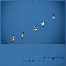 NATE WOOLEY The Almond