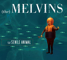 The Melvins A Senile Animal