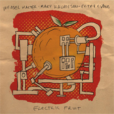WEASEL WALTER /MARY HALVORSON / PETER EVANS Electric Fruit