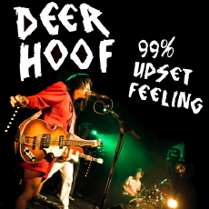 DEERHOOF 99% Upset Feeling