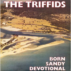 THE TRIFFIDS Born Sandy Devotional