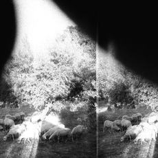Godspeed You! Black Emperor  Asunder, Sweet and Distress