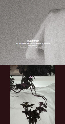 STIAN WESTERHUS / SIDSEL ENDRESEN & STIAN WESTERHUS The Matriarch And The Wrong Kind Of Flowers / Didymoi Dreams